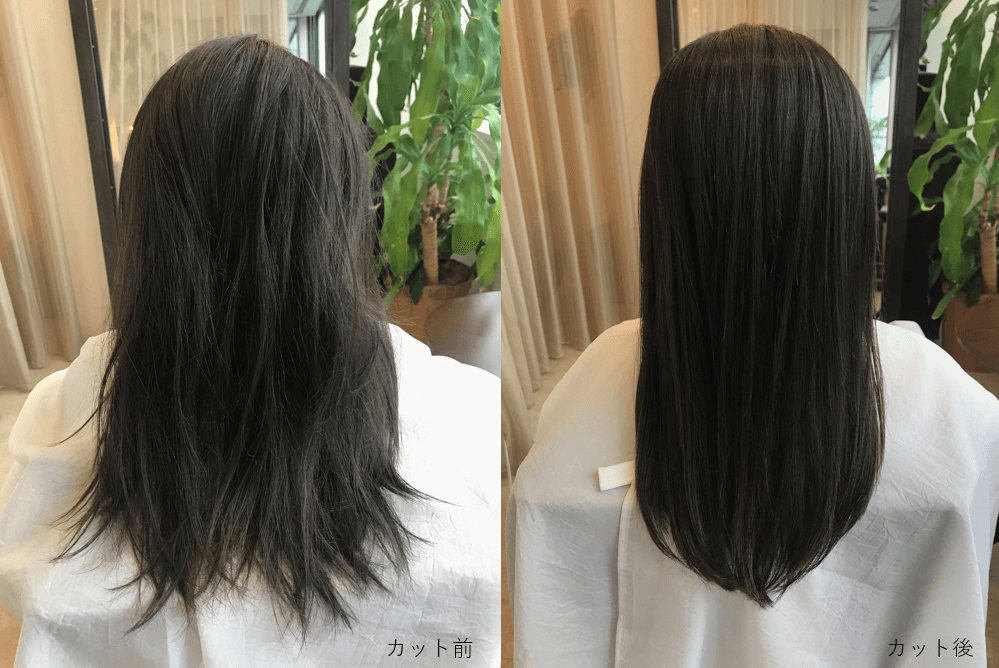 髪質に悩んでいる人必見。美しい髪の毛が蘇る驚く…