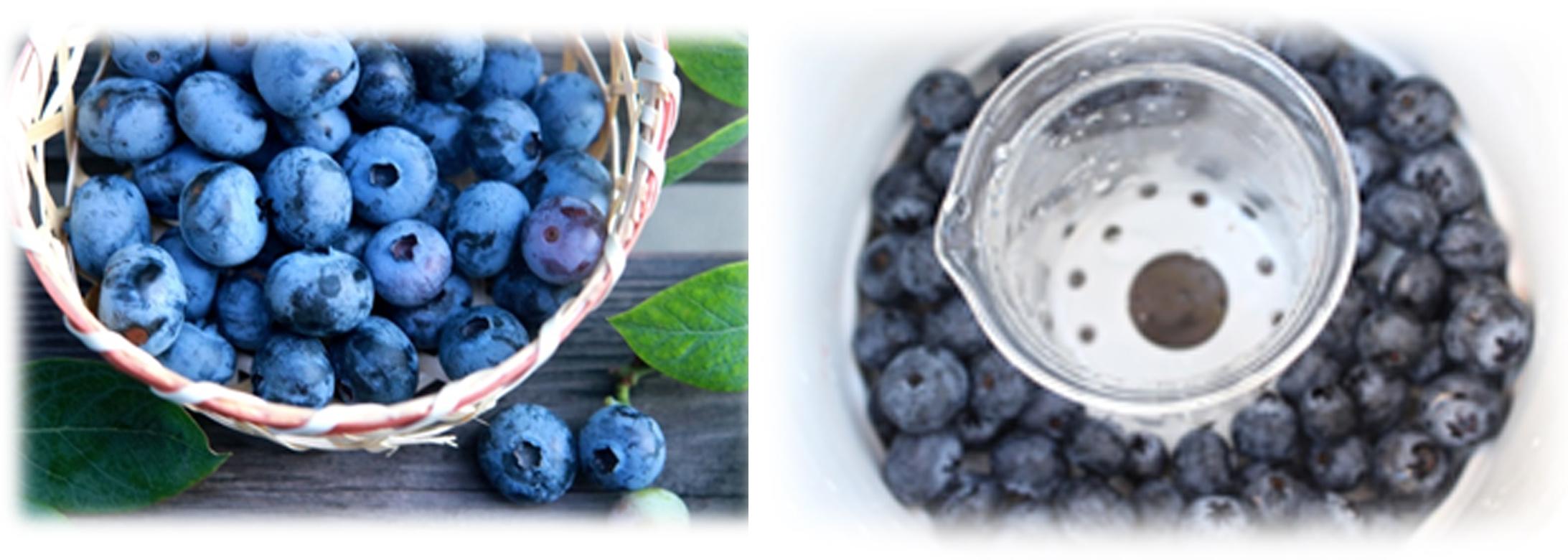 機能性食品を効率よく摂取/「キッチン蒸留手法」…